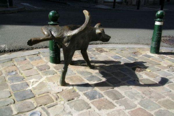 пикаещо куче